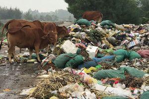 Người dân khốn khổ chịu đựng bãi rác 'khổng lồ' ở Diễn Ngọc