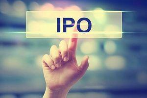 Cổ phần hóa, thoái vốn: Bứt phá được không?