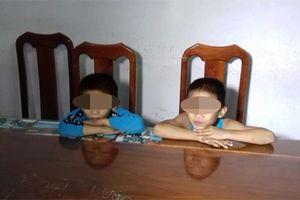 Bắt hai bé dưới 10 tuổi thực hiện gần 30 vụ trộm cắp