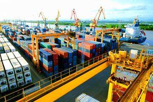 Thứ hạng xuất nhập khẩu Việt Nam có thể được cải thiện nhờ kết quả ấn tượng trong năm 2018