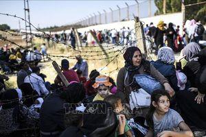 WHO bác bỏ quan điểm người di cư là nguồn lây lan bệnh lạ