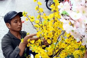 Hoa đào, hoa mai giả hàng chục triệu vẫn đắt khách ngày Tết