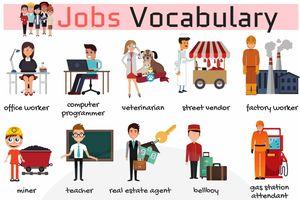 30 từ vựng tiếng Anh chỉ nghề nghiệp