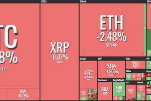 Giá Bitcoin hôm nay 22/1: Bitcoin thủng đáy, thị trường chao đảo
