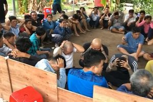 Cảnh sát vây trường gà ở Tân Phú, bắt giữ 72 con bạc