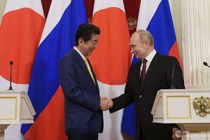 Hội đàm Nga – Nhật: Ông Putin chỉ dùng 'củ cà rốt' để nhử ông Abe?