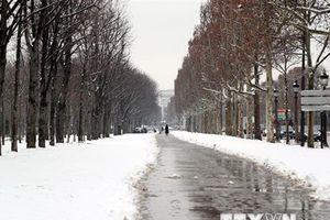 Tuyết rơi dày đặc ở Pháp ảnh hưởng nghiêm trọng đến giao thông