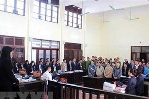 Xét xử vụ án chạy thận: Luật sư bào chữa cho Hoàng Công Lương