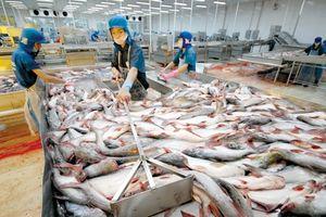 Kịch bản nào cho ngành thủy sản năm mới 2019?