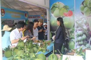 Hội chợ giới thiệu sản phẩm OCOP tỉnh Bến Tre đầu tiên tại TP HCM