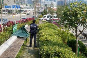 Diễn viên quần chúng TVB qua đời vì rét khi ngủ giữa công viên