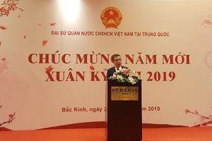 Cộng đồng người Việt tại Trung Quốc phấn khởi đón Xuân Kỷ Hợi 2019