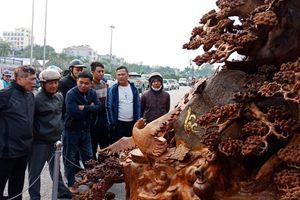 'Choáng' với bức tượng Phật Di Lặc bằng gỗ hương giá 1,2 tỉ đồng