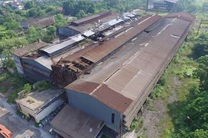 Phó TT Trương Hòa Bình chỉ đạo kiểm tra việc thu hồi đất nhà máy thép Gia Sàng