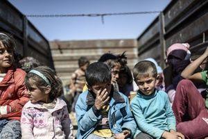 WHO cứu trợ y tế khẩn cấp cho người dân ở Đông Bắc Syria