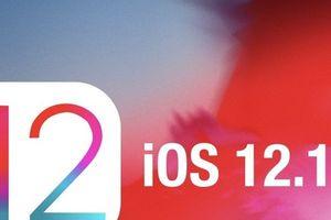 Apple tung bản cập nhật iOS 12.1.3 không sửa lỗi mất kết nối dữ liệu