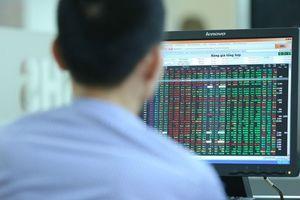 Nhận định chứng khoán phiên 24/1: Thanh khoản thấp, VN-Index chưa thể đi xa