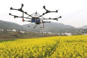 Công nghệ tái định hình nông nghiệp Trung Quốc