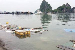 UNESCO: 'Nhìn Hội An, Hạ Long là thấy thách thức của di sản Việt Nam'