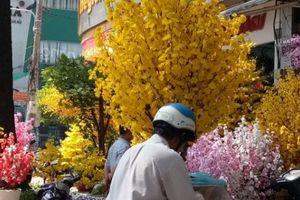 TP.HCM: Hoa giả trang trí Tết giá hàng chục triệu đồng vẫn hút khách