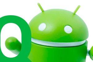 Google đã sẵn sàng chờ ngày ra mắt Android 10 Quiche