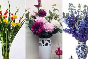 Những loại hoa trang trí nhà mà chỉ cần nhìn thấy là gợi nhớ đến Tết xưa