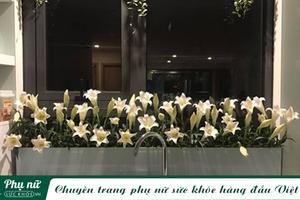 'Vườn hoa' độc đáo trên cửa sổ nhà bếp của bà mẹ khéo tay Hà Thành
