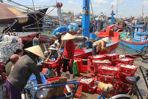 Ngư dân miền Trung chuẩn bị Tết