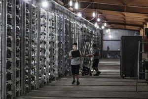 Cứ mỗi 4 ngày, Trung Quốc có thêm một 'kỳ lân' công nghệ