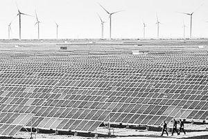 Ðẩy mạnh sử dụng các nguồn năng lượng tái tạo
