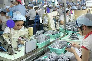 Phúc lợi xã hội đối với người lao động: Thước đo năng suất lao động