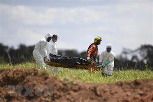 Vụ vỡ đập tại Brazil: Số nạn nhân thiệt mạng tăng lên 84 người