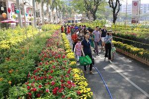 Hội chợ hoa xuân Phú Mỹ Hưng Tết Kỷ Hợi: Hoa và cuộc sống