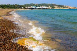 Bình Thuận kiến nghị trả lại hiện trạng cho thắng cảnh bãi đá 7 màu