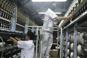 PVTEX Đình Vũ nâng công suất lên 12 dây chuyền