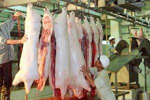 Giết mổ gia súc, gia cầm nhỏ lẻ: Vẫn khó kiểm soát