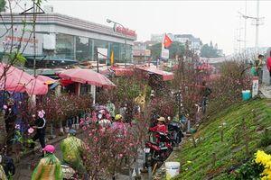 6 chợ hoa nổi tiếng đất Hà thành: Đến là thấy Tết