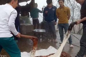 'Cắc, bụp' tiếng giã bánh dày trong ngày Tết của người Mông