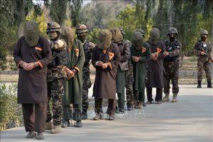 Đàm phán Mỹ-Taliban đạt tiến triển quan trọng về rút quân, chống khủng bố