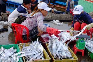 Ngư dân miền Trung bội thu mùa Tết