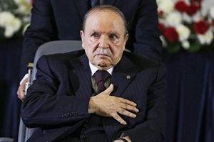 Đảng đối lập tại Algeria tẩy chay cuộc bầu cử tổng thống