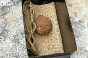 Tìm thấy lựu đạn Thế chiến I trong khoai tây để sản xuất snack