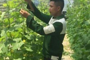 Các tỉnh, thành Đông Nam Bộ đua làm nông nghiệp công nghệ cao