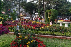 Những đường hoa rực rỡ, lung linh đón Tết ở thành Vinh