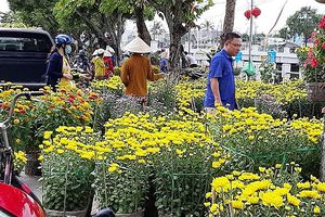 ĐBSCL: Hoa kiểng giảm giá chiều 30 Tết