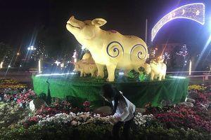 Yên Bái: Người dân hào hứng với đường hoa lần đầu tiên được tổ chức