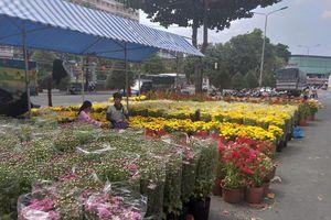 Cần Thơ: Hoa kiểng dội chợ, bánh kẹo đắt hàng