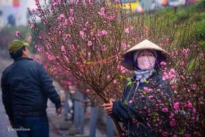 Những địa điểm ấn tượng đón Xuân Kỷ Hợi trên thế giới