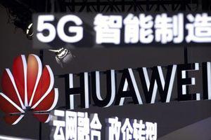 Italy phủ nhận thông tin sẽ 'cấm cửa' Huawei, ZTE tham gia mạng 5G
