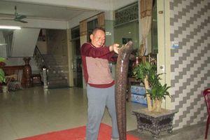 Bí ẩn miền Tây xứ Nghệ: 'Thủy quái' nặng hàng yến, dài cả mét